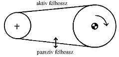 2009/04: Géphibák felismerése rezgésspektrumban - Szíjrezonancia előfordulása (forrás: PIM)